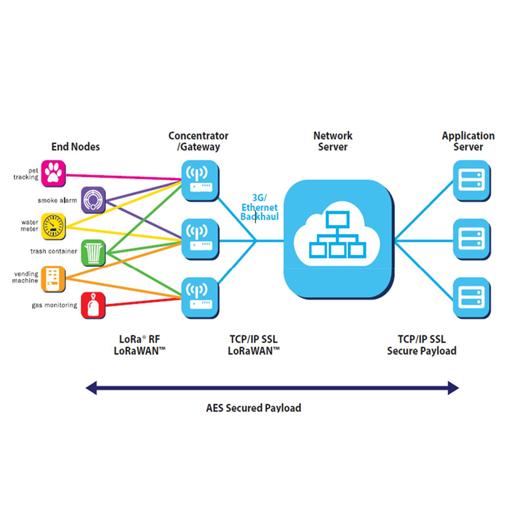 LNS-1 Network Server